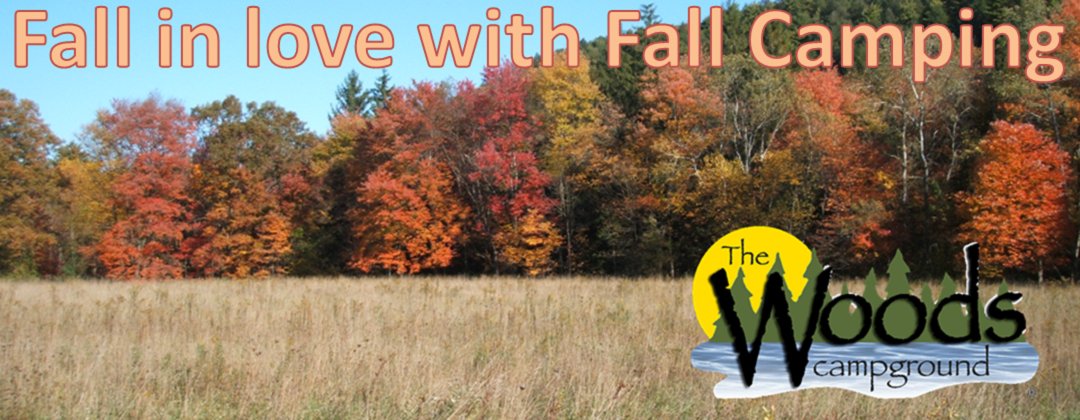 Fall in Love with Fall DL