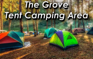 The Tent Grove